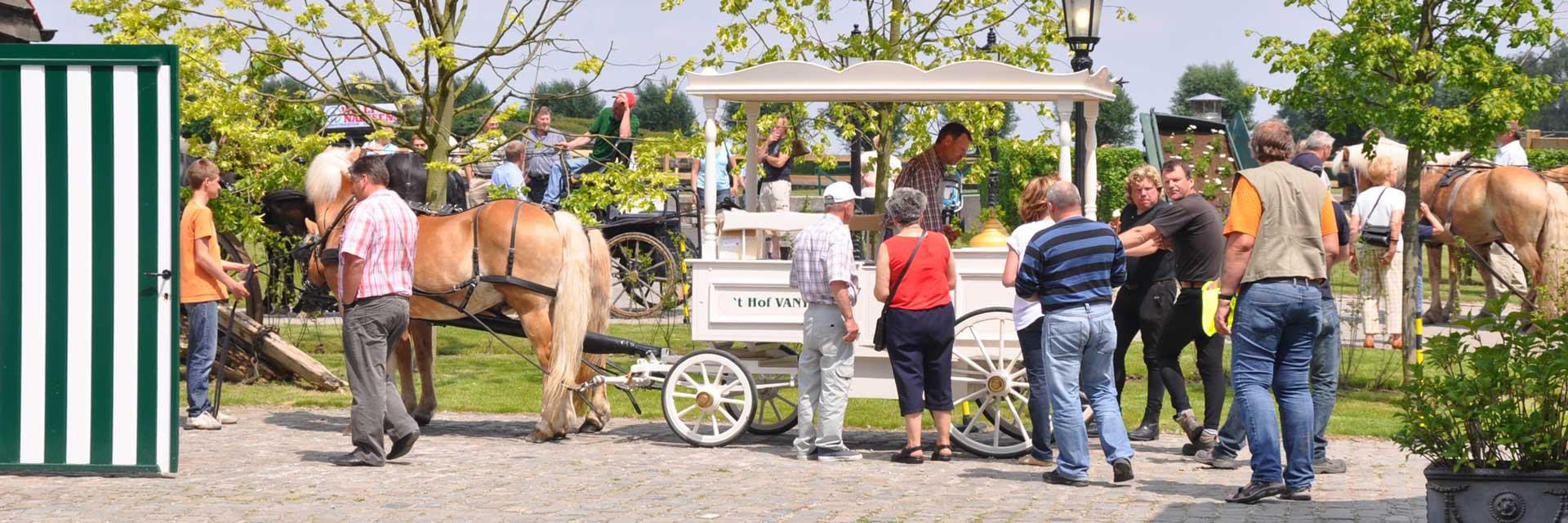 Ijskoets met paarden van 't Hof VANYS op een evenement